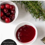 Pinterest Graphic for Paleo Cranberry Sauce